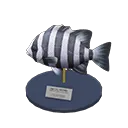 Miniature du Poisson Scarus - Meuble Animal Crossing New Horizons