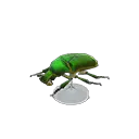 Miniature de l'insecte Pseudotorynorrhina - Meuble Animal Crossing New Horizons